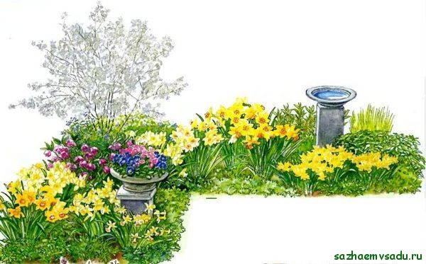 Цветники – классическое украшение участка