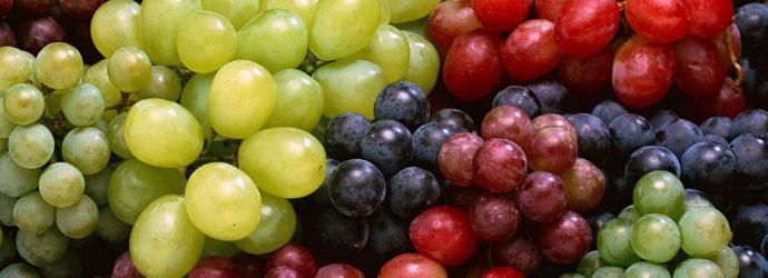 Хранение винограда: несколько полезных советов
