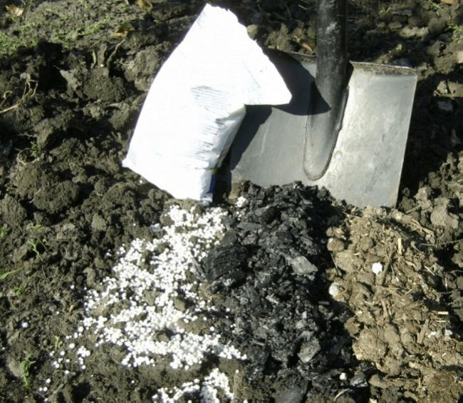 Лопата и удобрения