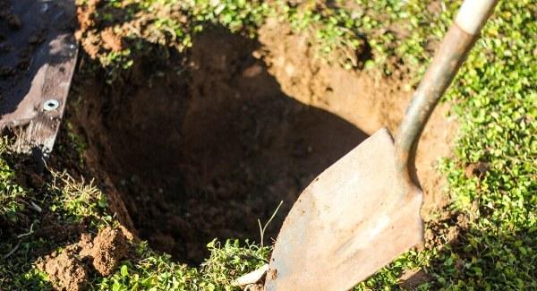 Подготовка ямы для груши