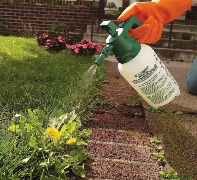 Химические способы борьбы с сорняками